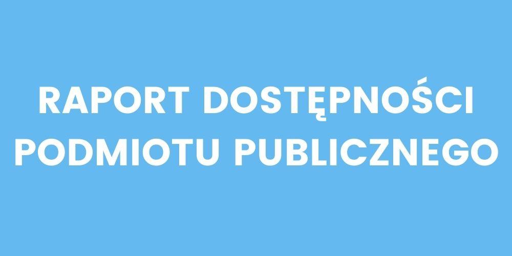 raport dostępności podmiotu publicznego